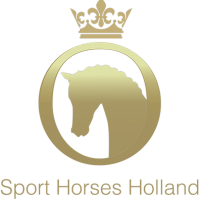 groot logo sporthorsesholland
